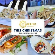 Merry Fishmas🐠🎅to our industry, wholesalers, retailers and the many seafood…